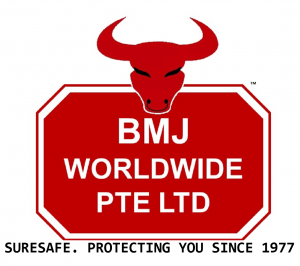 BMJ Worldwide Safety Boots